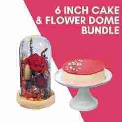 6 inch cake flower dome bundle